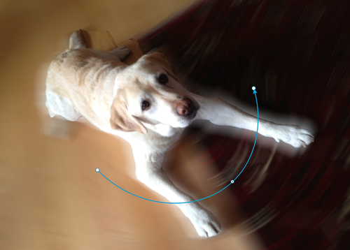 Path blur being added to photo of dog