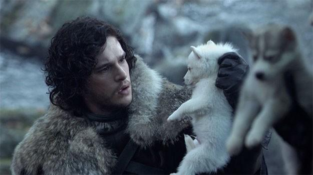 'Game of Thrones' Direwolf Dog, Odin, Dies from Cancer