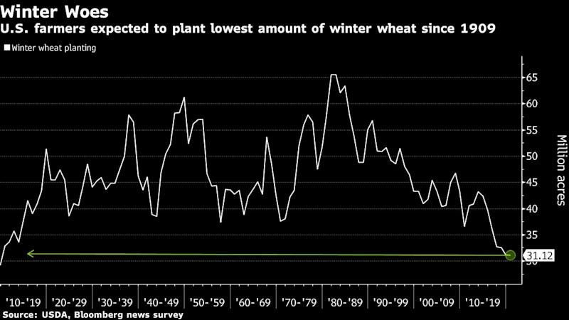 U.S. Winter-Wheat Acres Set to Drop to Lowest in 110 Years