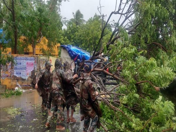 Army Teams helped to clear uprooted trees and cleared road blockages in important arterial roads. (Photo/Twitter)