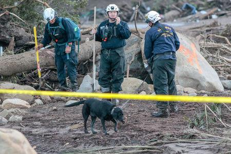 Search and rescue workers and a dog scour through properties after a mudslide in Montecito, California, U.S. January 11, 2018.  REUTERS/ Kyle Grillot