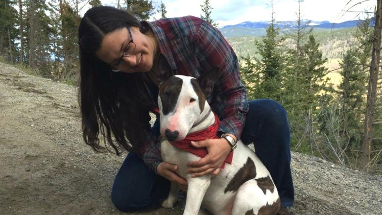 Bull terrier gets unexpected joyride after thief steals truck with dog inside