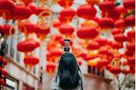 """<p>Peking University</p><p>ABC Mandarin Chinese course for beginners, including introduction of phonetics and daily expressions. </p><p><strong>Duration</strong>: Seven weeks</p><p><a class=""""link rapid-noclick-resp"""" href=""""https://go.redirectingat.com?id=127X1599956&url=https%3A%2F%2Fwww.coursera.org%2Flearn%2Flearn-chinese&sref=https%3A%2F%2Fwww.elle.com%2Fuk%2Flife-and-culture%2Fg32077844%2Fbest-online-learning-courses%2F"""" rel=""""nofollow noopener"""" target=""""_blank"""" data-ylk=""""slk:ENROLL FOR FREE"""">ENROLL FOR FREE</a></p>"""