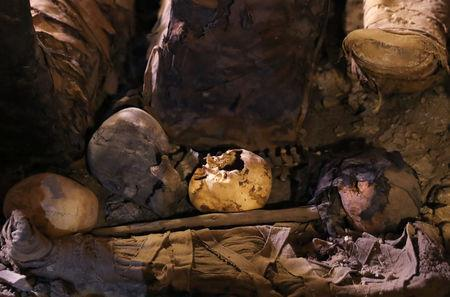 Skulls and bones are seen inside a tomb during the presentation of a new discovery at Tuna el-Gebel archaeological site in Minya Governorate, Egypt, February 2, 2019. REUTERS/Amr Abdallah Dalsh