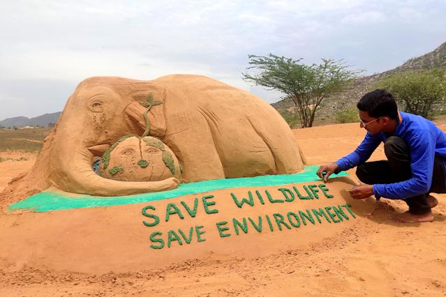 Sand Artist gives final touches to sand sculpture of an elephant, representing the recently killed wild pregnant elephant of Kerala, with the message 'Save Wildlife Save Environment', on the eve of World Environment Day, in Pushkar, Rajasthan, India on June 4, 2020. (Photo by Himanshu Sharma/NurPhoto via Getty Images)