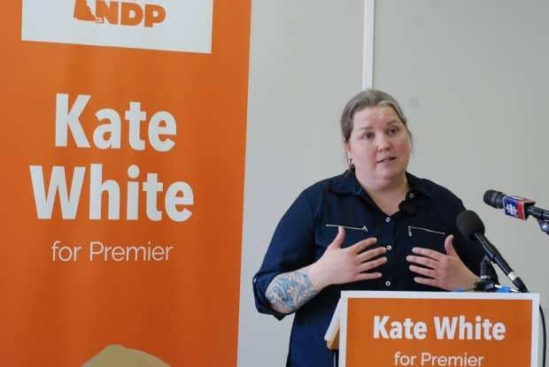 Yukon NDP Leader Kate White told reporters at her campaign launch event that she would take action on housing prices in Whitehorse, saying the city is 'starting to feel like Vancouver.'