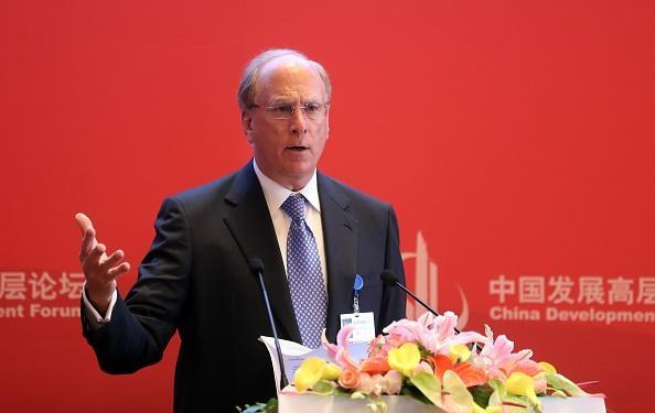 Larry Fink, CEO of BlackRock, calls for more transparency on private company executives pay. (Getty Images)