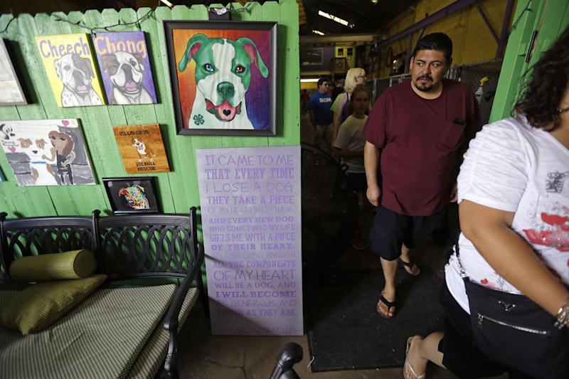 "In this Oct. 10, 2013, photo, visitors seeking to adopt pit bulls walk through the Villalobos Rescue Center, run by Tia Maria Torres of Animal Planet's ""Pit Bulls and Parolees,"" in New Orleans. Torres, who runs the nation's largest pit bull rescue center and has long paired abused and abandoned dogs with the parolees who care for them, has moved her long-running reality TV series from southern California to New Orleans, where hurricanes and overbreeding have left many pit bulls abandoned or abused. (AP Photo/Gerald Herbert)"