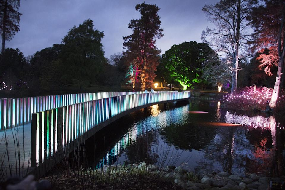 The famous botanical garden is lit up in festive colours during autumn [Photo: Kew Gardens]