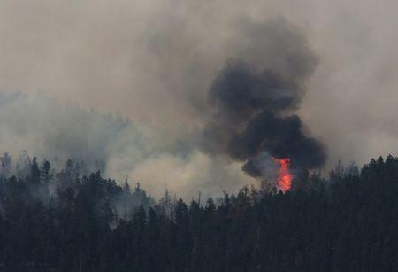 FILE PHOTO - A wildfire burns north east of the town of Cache Creek
