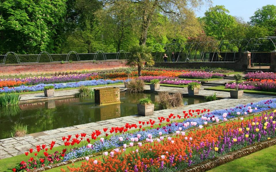 The Sunken Gardens are a particular highlight at Kensington Palace, London, for their vibrant colour and design - Getty Images