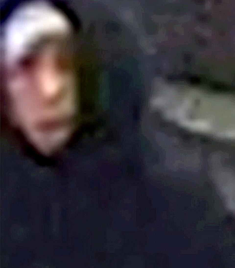 Police released the CCTV footage in a bid to track down the offenders (Picture: SWNS)
