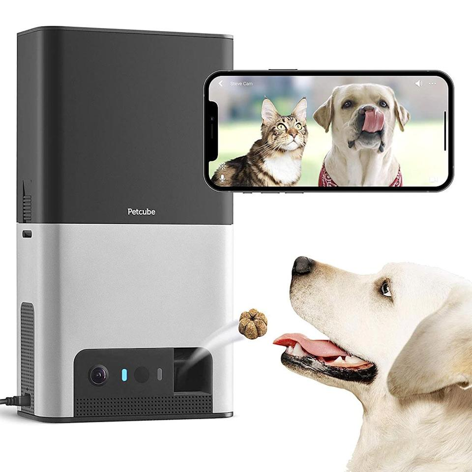 """<p>Pet parents heading back to the office can still keep an eye on their pets with this camera that comes equipped with a WiFi-controlled treat dispenser. </p> <p><strong>Buy it!</strong> Petcube Bites 2 Wi-Fi Pet Camera with Treat Dispenser, $199.00, <a href=""""https://www.amazon.com/gp/product/B07QZ4BWY1?&linkCode=ll1&tag=pofathersdaygiftforcatanddogdadskbender0621-20&linkId=8ed8c8688b73c973c8d806750478ca7e&language=en_US&ref_=as_li_ss_tl"""" rel=""""nofollow noopener"""" target=""""_blank"""" data-ylk=""""slk:Amazon.com"""" class=""""link rapid-noclick-resp"""">Amazon.com</a></p>"""