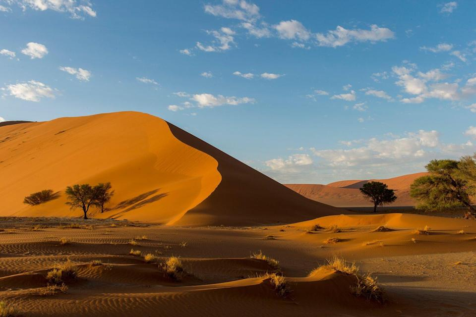 A pink sand dune in the Sossusvlei area, Namib-Naukluft National Park in Namibia