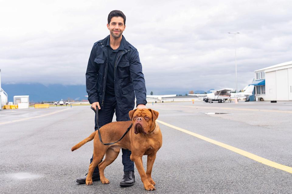 """Josh Peck and his canine co-star for """"Turner & Hooch."""""""
