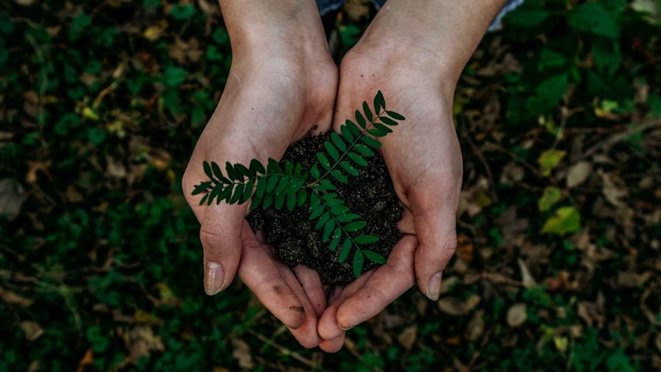 Want to be environmentally-conscious? Then start planting some good habits in your life.
