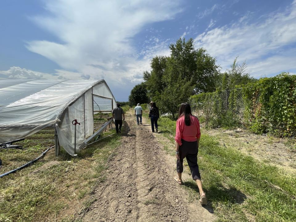 This Aug. 31, 2021 photo shows U.S. Rep. Teresa Leger Fernández taking a tour of Santa Cruz Farm and Greenhouses in Espanola, New Mexico. The farm relies on a traditional irrigation system known as an acequia to water crops of corn, chile and blackberries. (AP Photo/Susan Montoya Bryan)