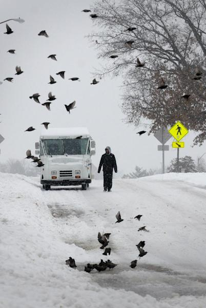 A pedestrian walks down a street as a flock of birds fly by after heavy snowfall moved through the region, Friday, Dec. 6, 2013, in Carbondale, Ill. A big chunk of the U.S. is getting a blast of frigid temperatures, sleet, snow and ice. (AP Photo/The Southern, Steve Matzker)
