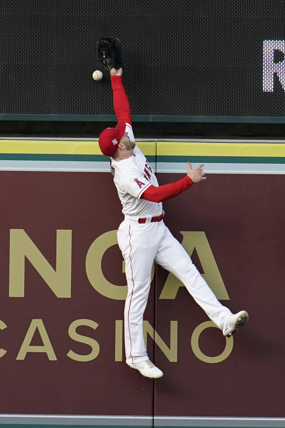 Los Angeles Angels center fielder Taylor Ward leaps but can't catch a home run ball from San Francisco Giants' Mauricio Dubon during the second inning of a baseball game Tuesday, June 22, 2021, in Anaheim, Calif. (AP Photo/Marcio Jose Sanchez)