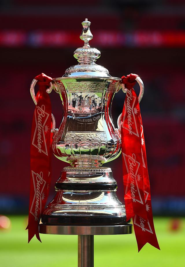 LONDON, ENGLAND - APRIL 13: The FA Cup is seen pitchside ahead of the FA Cup with Budweiser semi-final match between Hull City and Sheffield United at Wembley Stadium on April 13, 2014 in London, England. (Photo by Shaun Botterill/Getty Images)