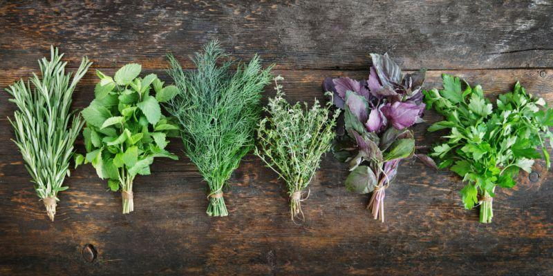 <p>10 herbs that can reduce anxiety and boost your health </p>