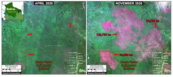 PHOTO: Massive fires in the Bolivian Amazon burned over 600,000 acres of the Chiquitano tropical forest between April and November, according to the Amazon Conservation's report. (Photo by Planet/MAAP)