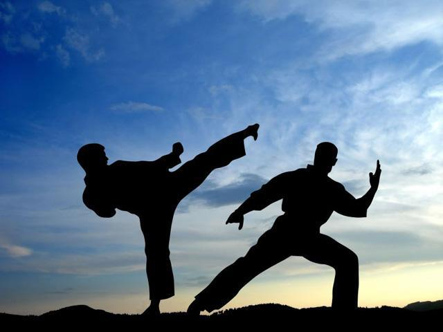 <p>Martial Arts- 4th century BCE Indian epic poetry and the Vedas give the earliest written mention of South Asian martial arts. Boxing, wrestling, swordsmanship, archery, and the use of numerous weapons are all described in detail. Source: http://vsbattles.wikia.com/wiki/Martial_Arts </p>