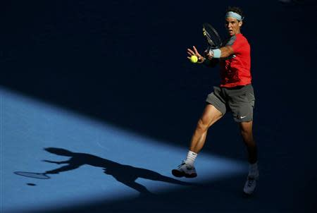 Rafael Nadal of Spain hits a return to Grigor Dimitrov of Bulgaria during their men's singles quarter-final tennis match at the Australian Open 2014 tennis tournament in Melbourne January 22, 2014. REUTERS/Jason Reed