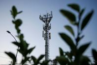 A cellular tower is pictured in the municipality of Guadalupe