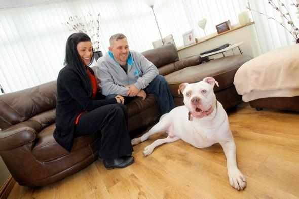 Couple cancel luxury honeymoon to pay for pet dog's chemo