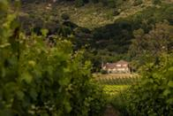 """<p><a href=""""https://www.gunbun.com/"""" rel=""""nofollow noopener"""" target=""""_blank"""" data-ylk=""""slk:Gundlach Bundshcu Winery"""" class=""""link rapid-noclick-resp"""">Gundlach Bundshcu Winery</a>, affectionately known as """"GunBun,"""" is California's oldest family-owned winery and is one of the region's most renowned producers. Named """"Rhinefarm,"""" the wine estate has been producing grapes since 1858 and offers 11 varietals today. The label's Gewürtztraiminer is a favorite and pays homage to the family's roots, as founder Jacob Gundlach brought over this grape from his homeland in the mid 19th century. </p><p>The bucolic Rhinefarm is a must-see for oenophiles, history buffs, and travel aficionados alike, as the property features an abundance of opportunities for learning more about GunBun and California's rich wine history. The private tastings offer exclusive ways to explore the heritage and diversity of this historic estate. <em>Reservations required. </em></p>"""