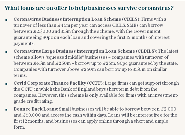 What loans are on offer to help businesses survive coronavirus?