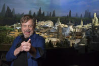 """<p>Mark Hamill was on hand to unveil the name of <a href=""""https://www.yahoo.com/movies/disneys-star-wars-land-concept-slideshow-wp-022947702.html"""" data-ylk=""""slk:the new 14-acre land;outcm:mb_qualified_link;_E:mb_qualified_link;ct:story;"""" class=""""link rapid-noclick-resp yahoo-link"""">the new 14-acre land</a> during D23 Expo. (Joshua Sudock/Disney Parks) </p>"""