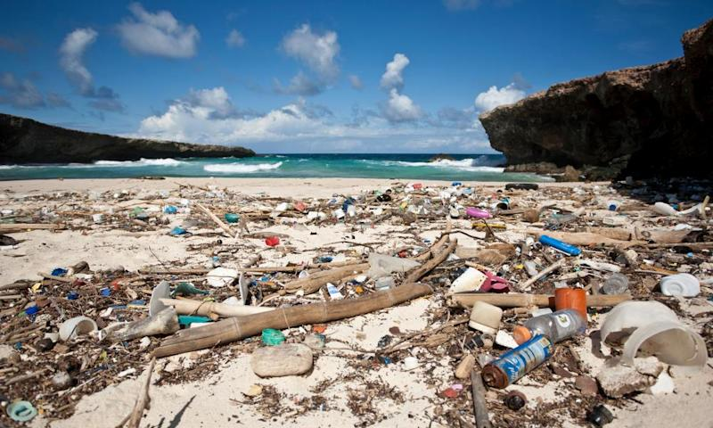 litter on a beach in caribbean