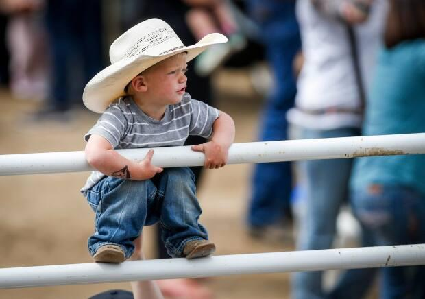 A young cowboy finds the perfect vantage point during bull riding rodeo action at the Calgary Stampede in 2019.
