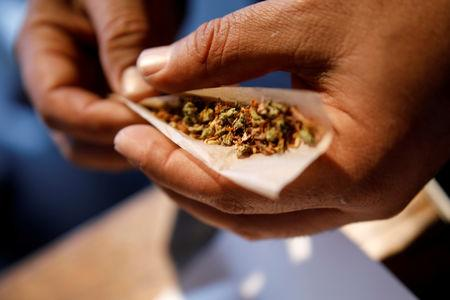 FILE PHOTO: A man prepares a cigarette mixed with marijuana during Cannatech 2017, an annual global cannabis industry event, in Tel Aviv, Israel March 20, 2017. REUTERS/Amir Cohen/File Photo