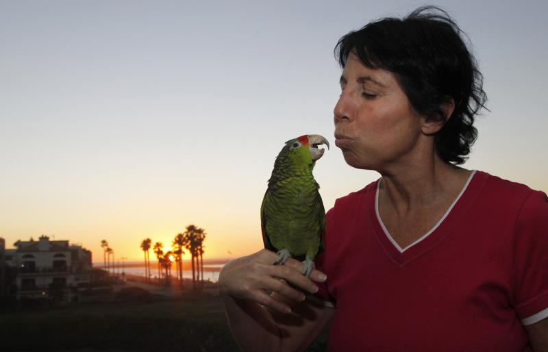 """In this photo taken on Tuesday, Feb. 8, 2012, Mira Tweti, Executive Director, National Parrot Care & Cage Xchange, kisses her rescue parrot named """"Liberty,"""" in her apartment in the Marina Del Rey area of Los Angeles. (AP Photo/Damian Dovarganes)"""