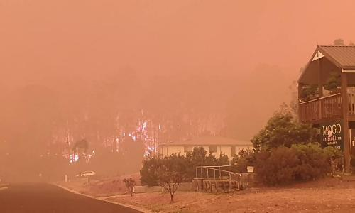 'We've lost our beautiful town': Mogo residents flee as bushfire rages up NSW south coast