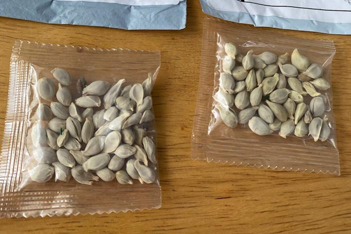 Unsolicited seeds have been sent to postal addresses in various parts of the US: via REUTERS