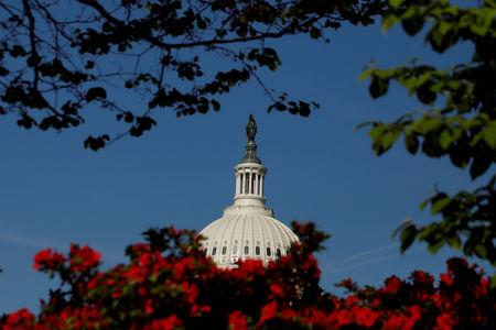 The  U.S. Capitol building is seen through flowers in Washington