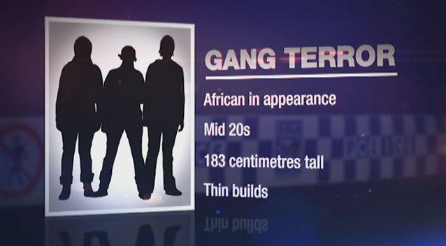 Police say Apex gang members are aged in their mid 20s, mostly of African or Sudanese appearance. Source: 7 News