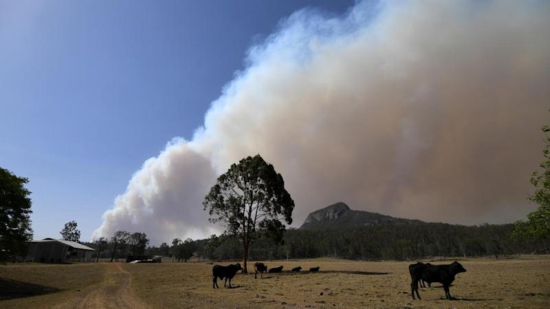 BUSHFIRES QUEENSLAND
