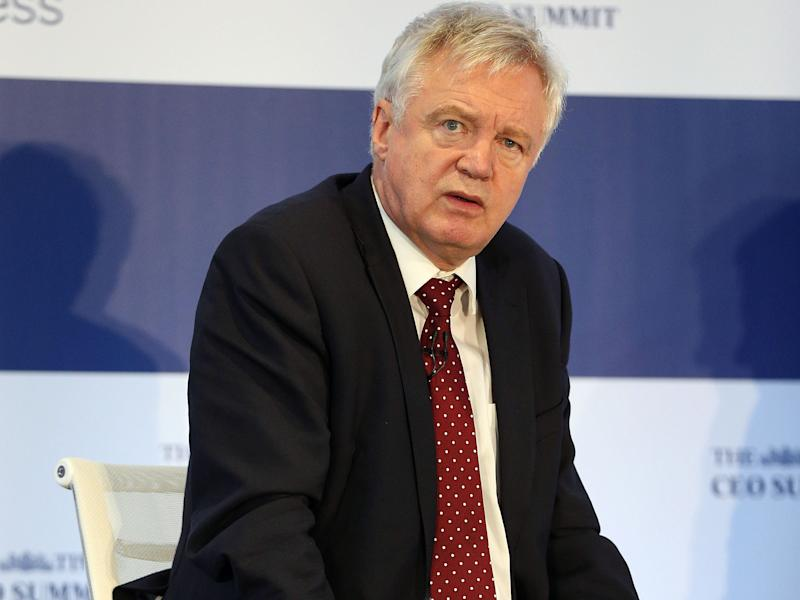 'Some fear Brexit will plunge Britain into a Mad Max-style world borrowed from dystopian fiction,' Mr Davis will tell business leaders: PA