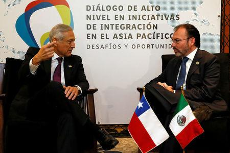 "Chile's Foreign Minister Heraldo Munoz (L) talks to Mexico's Foreign Minister Luis Videgaray during a meeting of the ""Alianza del Pacifico"" (Pacific Alliance) in Vina del Mar, Chile March 14, 2017. REUTERS/Rodrigo Garrido"