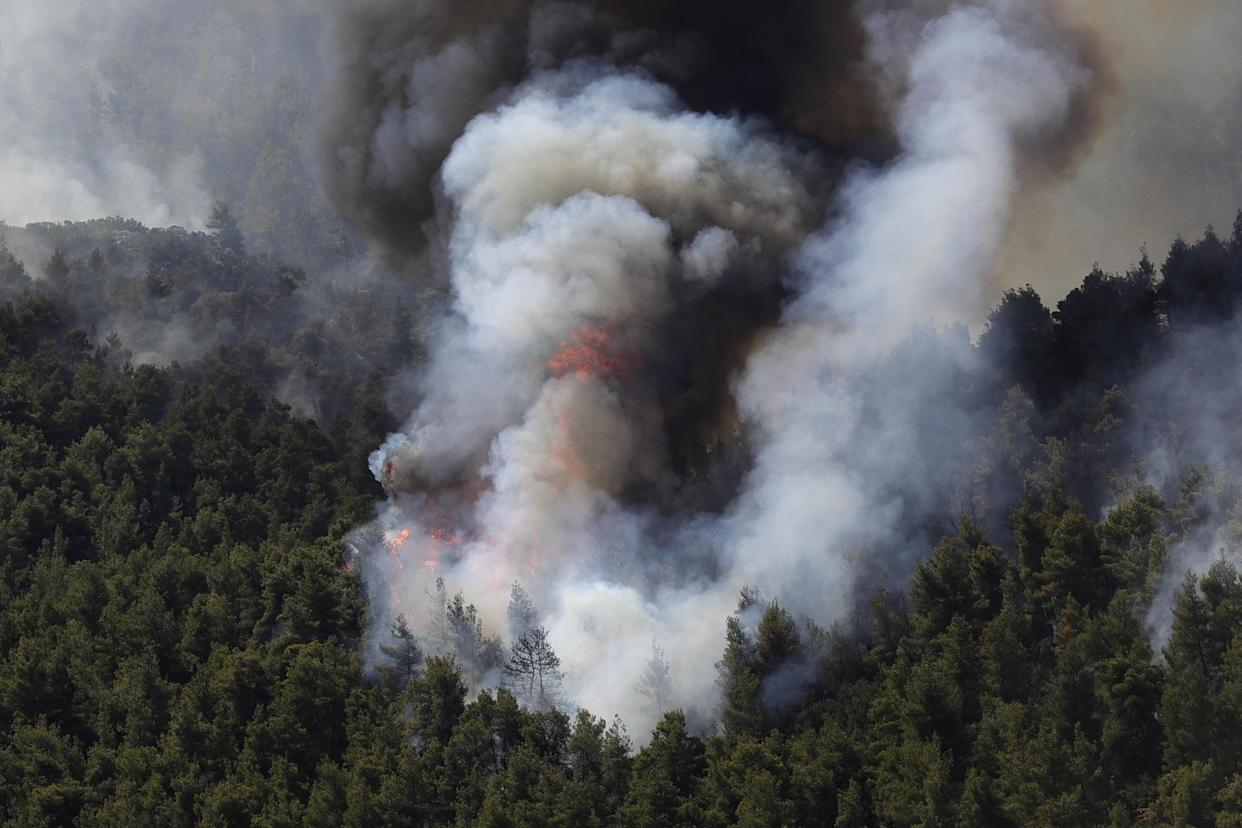 ATHENS, GREECE - AUGUST 17: Wildfire in a forested area near the village of Vilia in Athens, Greece on August 17, 2021. (Photo by Ayhan Mehmet/Anadolu Agency via Getty Images)