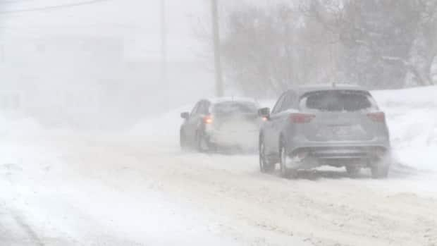A severe winter storm is set to roll through Newfoundland and southern Labrador Tuesday. (Colleen Connors/CBC - image credit)