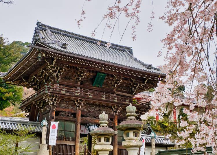 The famous temple is loved for its flowers