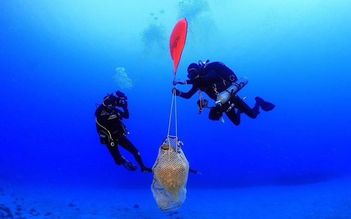 Divers raise an amphora from the seabed - Hellenic Ministry of Culture