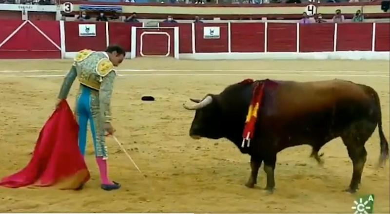 Enrique Ponce, frente al toro (Photo: CANAL SUR)