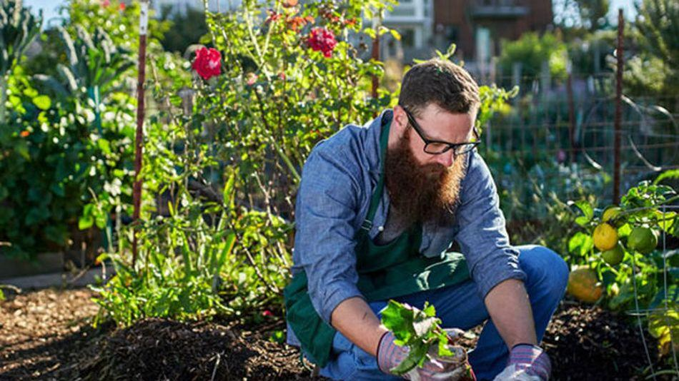 7 great gardening deals for people who are obsessed with plants